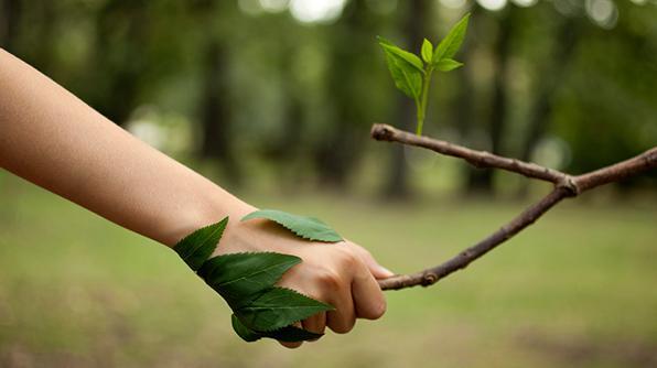 Estamos Comprometidos Con El Medio Ambiente Y Tenemos