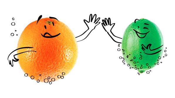 Limonadas Y Naranjadas El ABC De Su Sabor Frescura